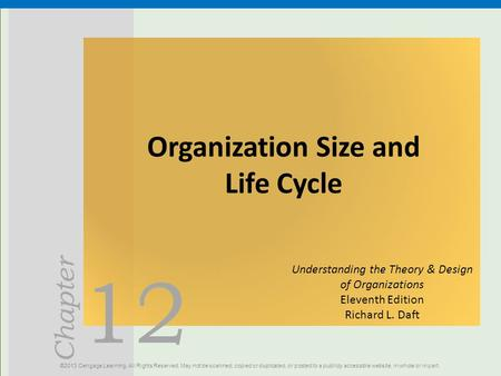 Organization Size and Life Cycle