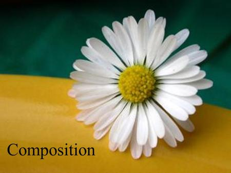Composition. Photographic composition is simply the selection and arrangement of subjects within the picture area.