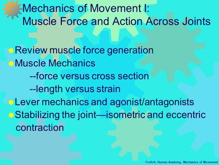 Frolich, Human Anatomy, Mechanics of Movement Mechanics of Movement I: Muscle Force and Action Across Joints  Review muscle force generation  Muscle.
