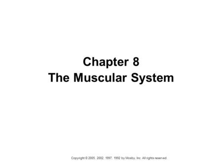 Copyright © 2005, 2002, 1997, 1992 by Mosby, Inc. All rights reserved. Chapter 8 The Muscular System.
