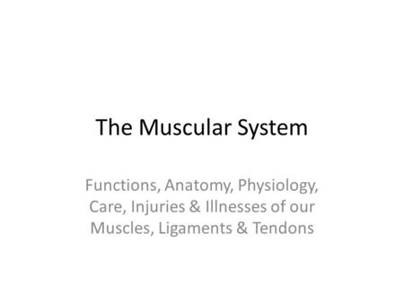 The Muscular System Functions, Anatomy, Physiology, Care, Injuries & Illnesses of our Muscles, Ligaments & Tendons.