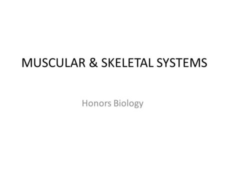 MUSCULAR & SKELETAL SYSTEMS Honors Biology. SKELETAL SYSTEM Adults have 206 bones in their Endoskeleton Skeleton – Appendicular: arms, legs, scapula,