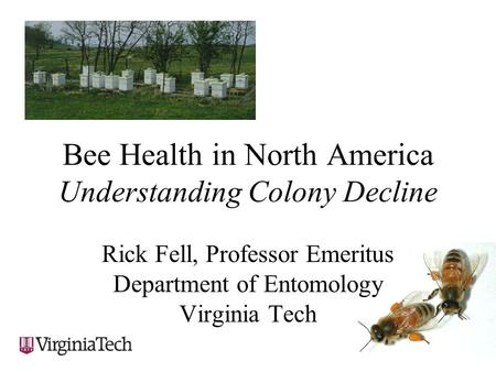 Bee Health in North America Understanding Colony Decline Rick Fell, Professor Emeritus Department of Entomology Virginia Tech.