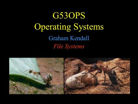 G53OPS Operating Systems Graham Kendall File Systems.