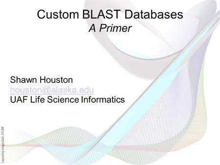Layout by orngjce223, CC-BY Custom BLAST Databases A Primer Shawn Houston UAF Life Science Informatics.