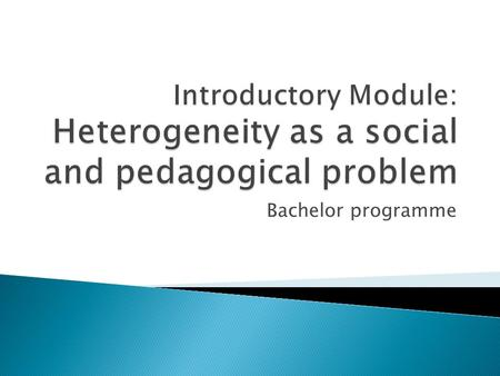 Bachelor programme. To make students aware of heterogeneity as a social and pedagogical problem.