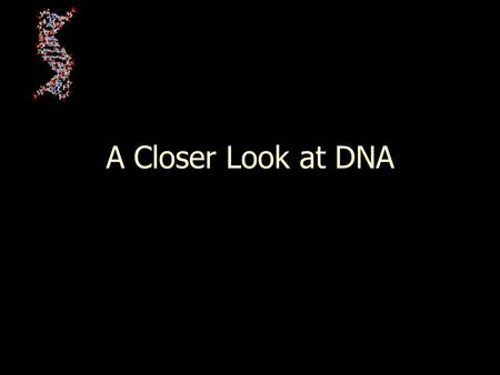 A Closer Look at DNA.