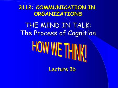 THE MIND IN TALK: The Process of Cognition Lecture 3b Lecture 3b 3112: COMMUNICATION IN ORGANIZATIONS.