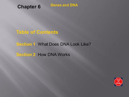 Chapter 6 Table of Contents Section 1 What Does DNA Look Like?