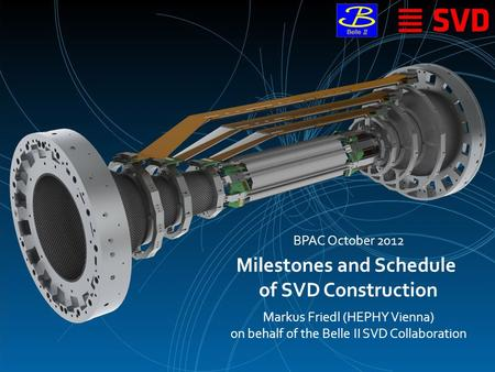 Milestones and Schedule of SVD Construction Markus Friedl (HEPHY Vienna) on behalf of the Belle II SVD Collaboration BPAC October 2012.