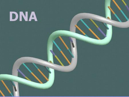 DNA DNA. DNA is often called the blueprint of life. In simple terms, DNA contains the instructions for making proteins within the cell. Proteins control.