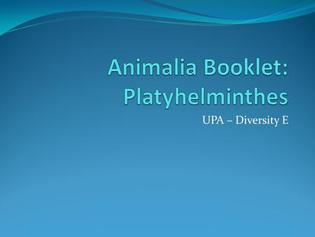 UPA – Diversity E. Phylum Name [1pt] Platyhelminthes -½ for misspelling by ONE letter -1 pt if misspelling by more than one letter.