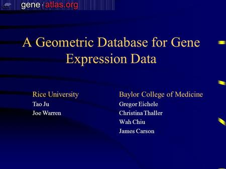 A Geometric Database for Gene Expression Data Baylor College of Medicine Gregor Eichele Christina Thaller Wah Chiu James Carson Rice University Tao Ju.