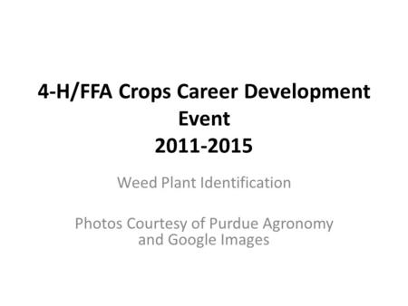 4-H/FFA Crops Career Development Event 2011-2015 Weed Plant Identification Photos Courtesy of Purdue Agronomy and Google Images.
