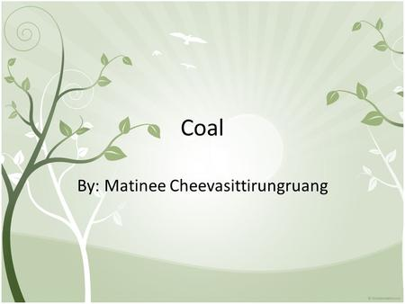 Coal By: Matinee Cheevasittirungruang. Coal is a shiny black rock that has a lot of energy in it. It make light and energy when it's burned. Native American.