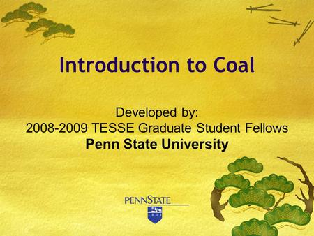 Developed by: 2008-2009 TESSE Graduate Student Fellows Penn State University Introduction to Coal.