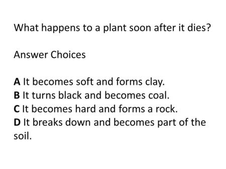What happens to a plant soon after it dies? Answer Choices A It becomes soft and forms clay. B It turns black and becomes coal. C It becomes hard and forms.
