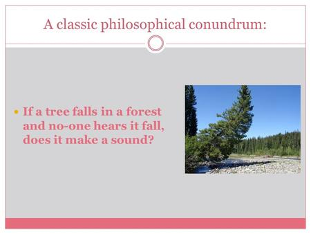 A classic philosophical conundrum: If a tree falls in a forest and no-one hears it fall, does it make a sound?