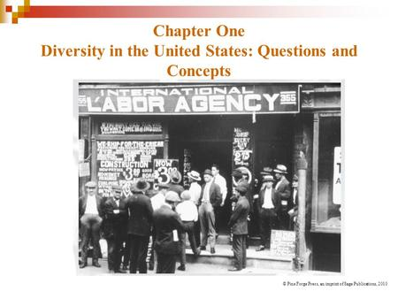 Chapter One Diversity in the United States: Questions and Concepts © Pine Forge Press, an imprint of Sage Publications, 2010.