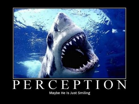 "1Organizational Behavior / Perception. "" WE DON'T SEE THINGS AS THEY ARE, WE SEE THINGS AS WE ARE."""