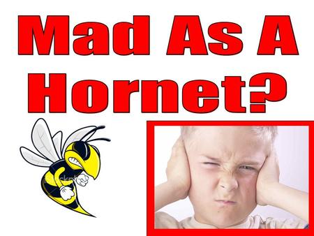 "Have you ever disturbed one? Why do they call it ""mad as a hornet""? If you've ever disturbed a hornet's nest, you know the answer to this. –Hornets will."
