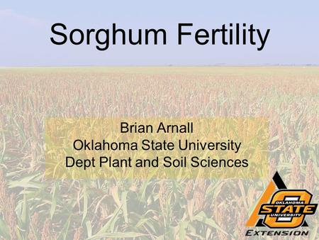Sorghum Fertility Brian Arnall Oklahoma State University Dept Plant and Soil Sciences.