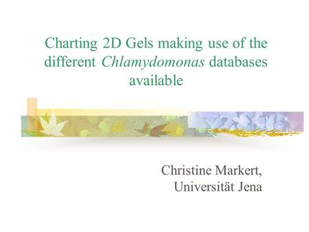 Charting 2D Gels making use of the different Chlamydomonas databases available Christine Markert, Universität Jena.