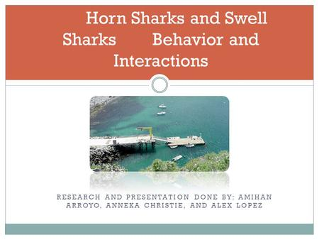 RESEARCH AND PRESENTATION DONE BY: AMIHAN ARROYO, ANNEKA CHRISTIE, AND ALEX LOPEZ Horn Sharks and Swell Sharks Behavior and Interactions.