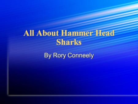 All About Hammer Head Sharks By Rory Conneely. In my report you are going to learn about the hammer head shark. First, you are going to learn about physical.