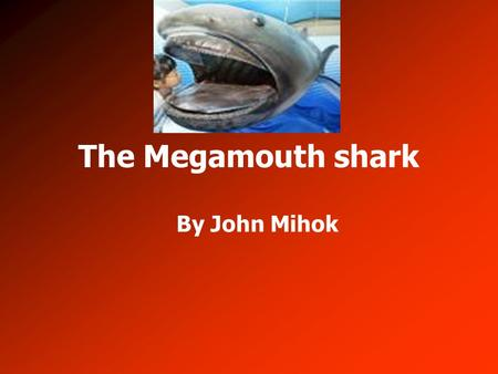The Megamouth shark By John Mihok. Physical Features Its color is bluish-black 17.6 feet – 21 feet Weighs 1,650 pounds Huge mouth on head No anal fin.