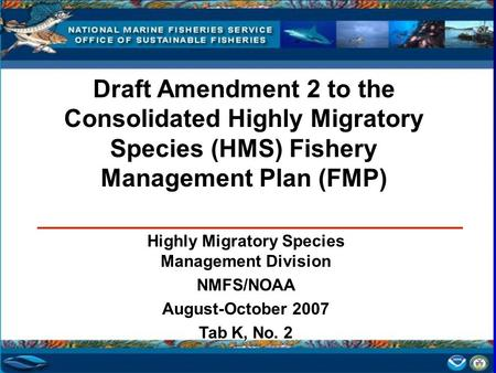 Draft Amendment 2 to the Consolidated Highly Migratory Species (HMS) Fishery Management Plan (FMP) Highly Migratory Species Management Division NMFS/NOAA.