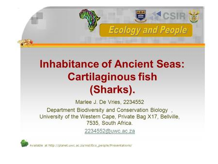 Inhabitance of Ancient Seas: Cartilaginous fish (Sharks).