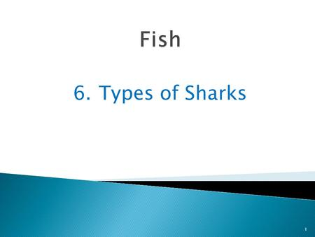 Fish 6.	Types of Sharks.