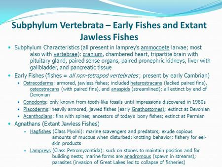 Subphylum Vertebrata – Early Fishes and Extant Jawless Fishes Subphylum Characteristics (all present in lamprey's ammocoete larvae; most also with vertebrae):