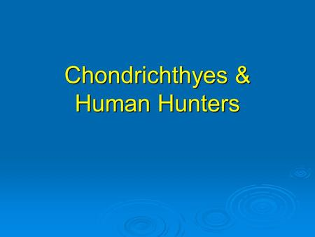 Chondrichthyes & Human Hunters. Human Hunters a. The natural enemies of sharks include other sharks, killer whales and the most dangerous to sharks, by.