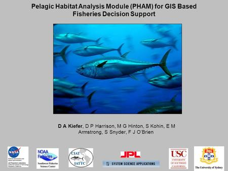 D A Kiefer, D P Harrison, M G Hinton, S Kohin, E M Armstrong, S Snyder, F J O'Brien Pelagic Habitat Analysis Module (PHAM) for GIS Based Fisheries Decision.