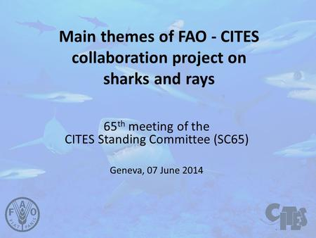 Main themes of FAO - CITES collaboration project on sharks and rays 65 th meeting of the CITES Standing Committee (SC65) Geneva, 07 June 2014.