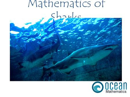 Mathematics of Sharks. When foraging for prey, Sharks follow a Lévy walk / flight characterized by short movements in random directions, interspersed.