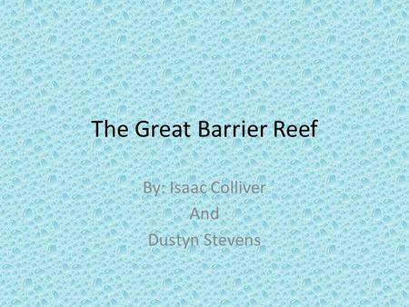 The Great Barrier Reef By: Isaac Colliver And Dustyn Stevens.