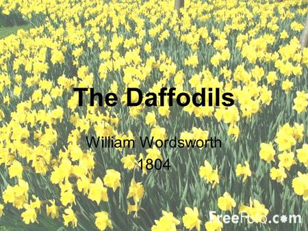 The Daffodils William Wordsworth 1804.