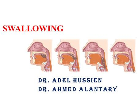 SWALLOWING DR. ADEL HUSSIEN DR. AHMED ALANTARY. Objectives: The student should know: - The normal swallowing process and its stages. - Mechanism of each.