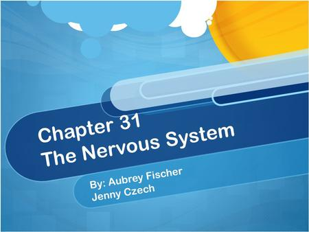 Chapter 31 The Nervous System