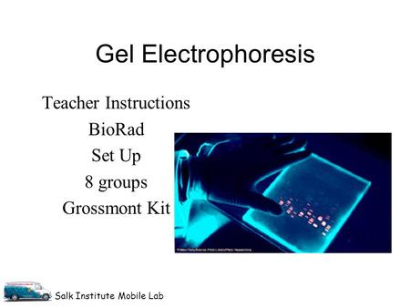 Salk Institute Mobile Lab Gel Electrophoresis Teacher Instructions BioRad Set Up 8 groups Grossmont Kit.