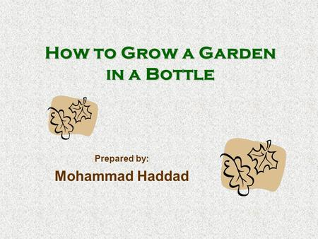 How to Grow a Garden in a Bottle Prepared by: Mohammad Haddad.