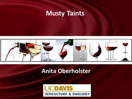 Anita Oberholster Musty Taints. Introduction: Musty Taints What off-odours are classified as musty taints? – Fungal, earthy, moldy, corky, mushroom or.