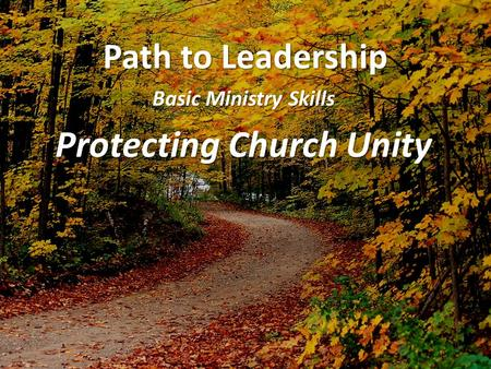 Path to Leadership Basic Ministry Skills Protecting Church Unity.