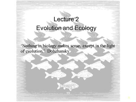 Lecture 2 Evolution and Ecology