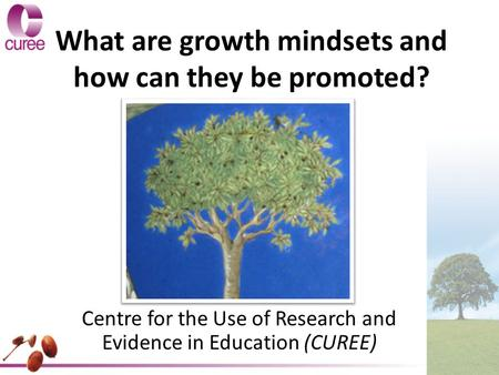 What are growth mindsets and how can they be promoted? Centre for the Use of Research and Evidence in Education (CUREE)