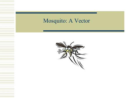 Mosquito: A Vector.