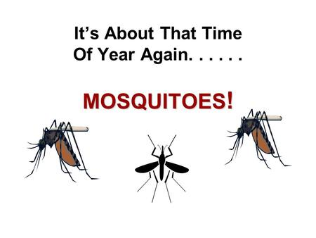 It's About That Time Of Year Again...... MOSQUITOES !